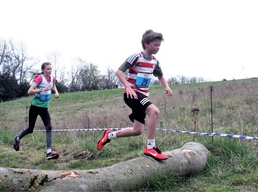 Harriers Youngsters Back Racing Again